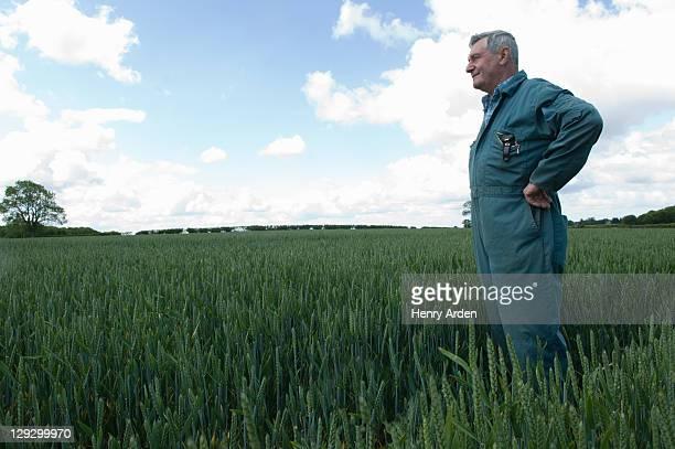 Farmer stehen in wheat field