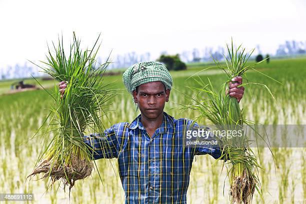 Farmer Standing Portrait in Green Field
