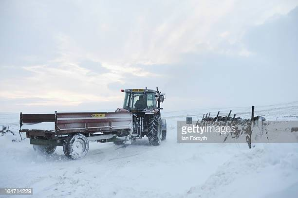 Farmer Stuart Buckle drives a tractor and trailor at his farm in the hamlet of Barras during heavy snow on March 27 2013 near Kirkby Stephen Cumbria...