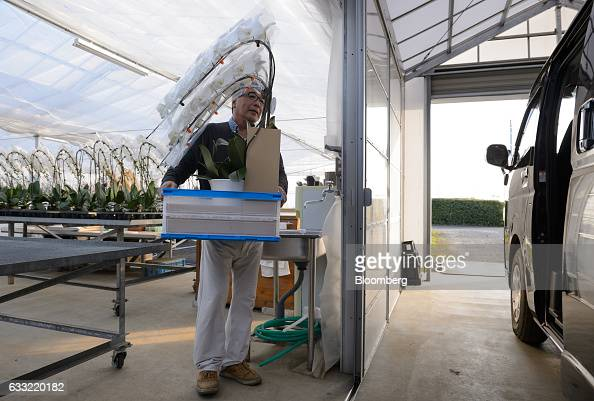 Farmer Takanobu Ushimura loads potted orchids into a van outside a greenhouse at Ushimura Orchid Farm a supplier to ArtGreen Co in Ebina City...