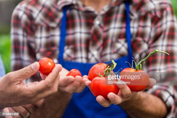 Farmer talks with customer about fresh tomatoes