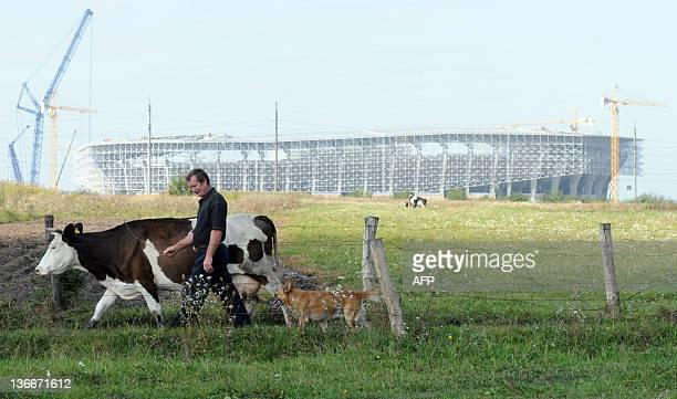 A farmer tends to his livestock in front of the construction site of a new stadium in the western Ukrainian city of Lviv on September 15 2011 Lviv...