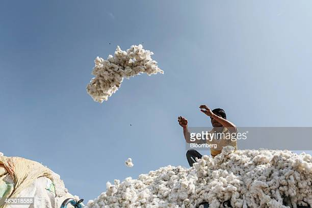 A farmer throws a bundle of cotton for inspection during an auction in a local market in Yavatmal Maharashtra India on Wednesday Feb 4 2015 In a...