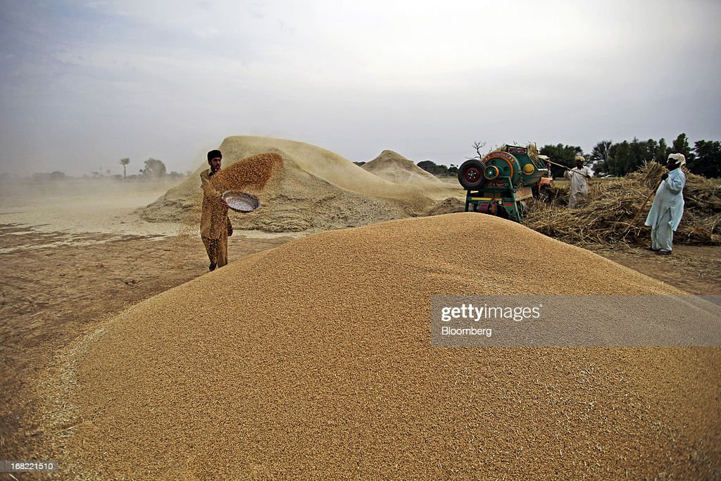 A farmer throws grain from a bowl onto a mound of wheat, as other farmers collect and thresh wheat during a harvest in the Fatehganj district of Punjab province, Pakistan, on Sunday, May 5, 2013. Pakistan wheat output to increase this year, the U.S Department of Agriculture's Foreign Agricultural Service said in a report posted today on its website on April 4. Photographer: Asad Zaidi/Bloomberg via Getty Images