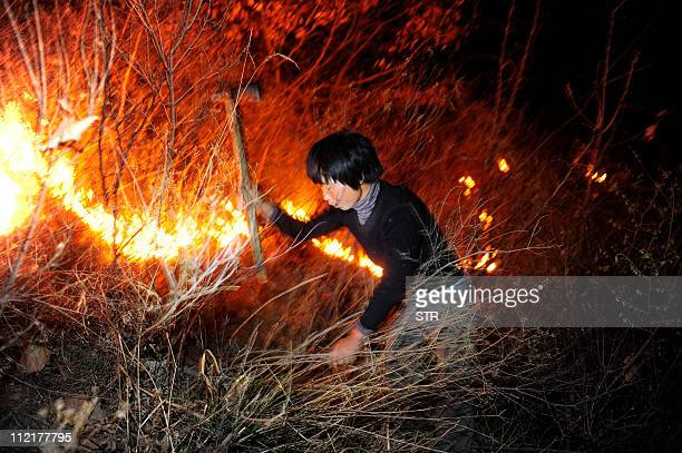 A farmer tries to extinguish a forest blaze in a remote mountainous region of Qinhuangdao northeast China's Hebei province on April 13 2011 The...