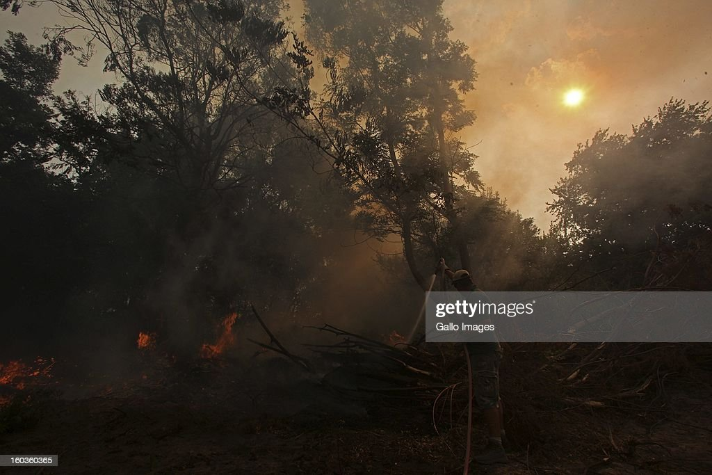 A farmer tries to put out the flames at De Hoop farm on January 29, 2013, in Paarl, South Africa. No firemen were present as the veld fire swept through the entire Boland region in the Western Cape.