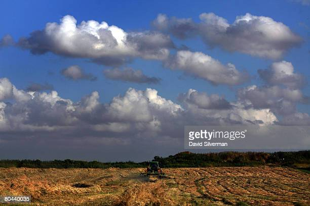 A farmer turns hay in a field on March 30 2008 outside the town of Hod Hasharon central Israel World food prices are soaring in the face of what some...