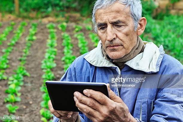 Farmer using tablet