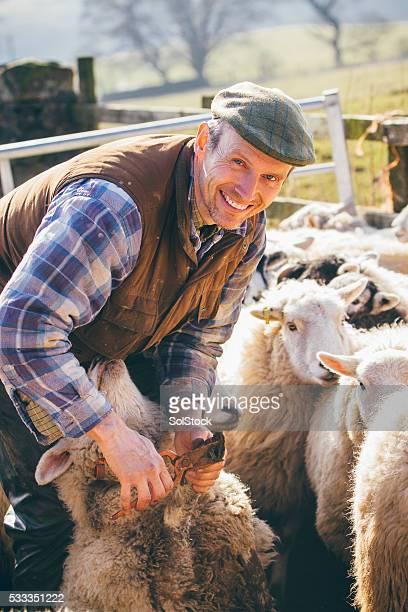 Farmer Using Toe Clippers