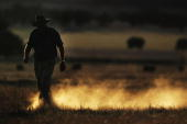 Farmer Wayne Dunford walks through a dusty field after the Barley crop that was planted in it failed October 26 2006 in Parkes Australia Over half of...