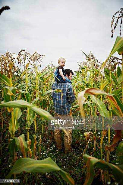Farmer with baby boy on shoulders in corn field