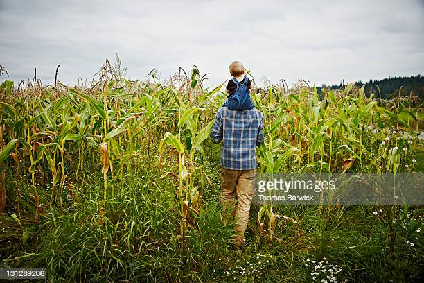 Farmer with baby boy on shoulders in corn field