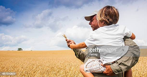 Farmer with his son checking the wheat crop