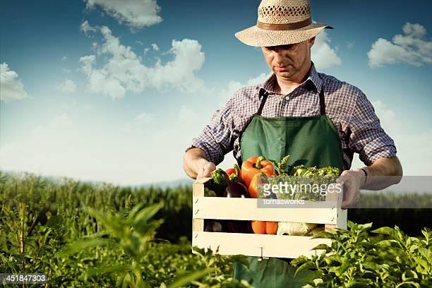 Agriculteur avec légumes à fronces
