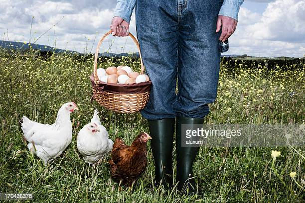 Farmer with organic eggs