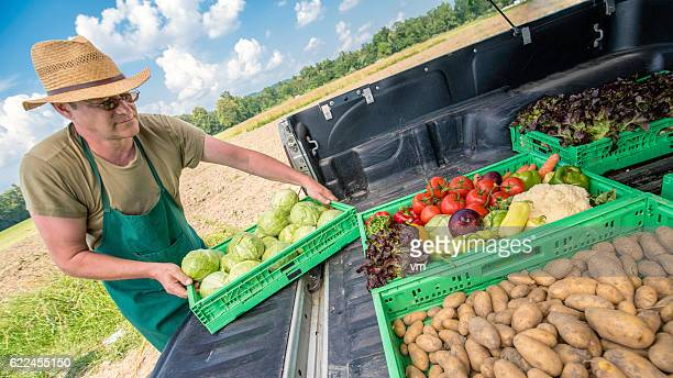 Farmer with vegetable crates