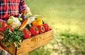 Farmer holding box with fresh, organic vegetables