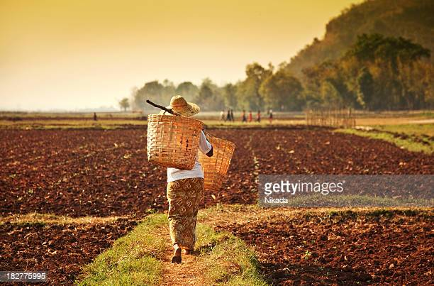 farmer woman in Asia