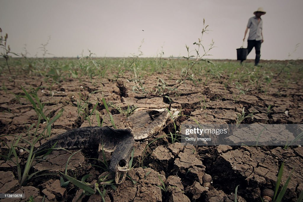 A farmer work on the dried field on May 9, 2011 in Wuhan, Hubei Province of China. Farmers in most parts of central and southern China are worried about the harvest after seeing one of the driest springs on previous records.