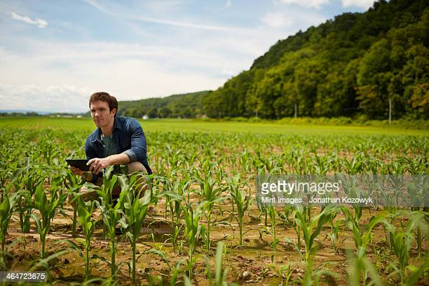A farmer working in his fields in New York State,USA.