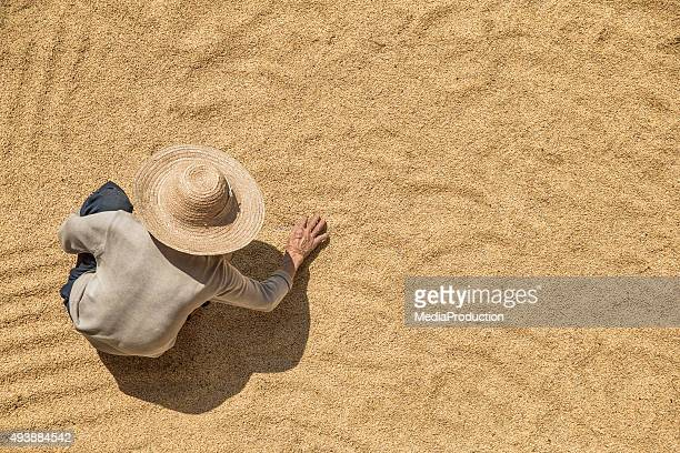 Farmer working on harvested grains from above
