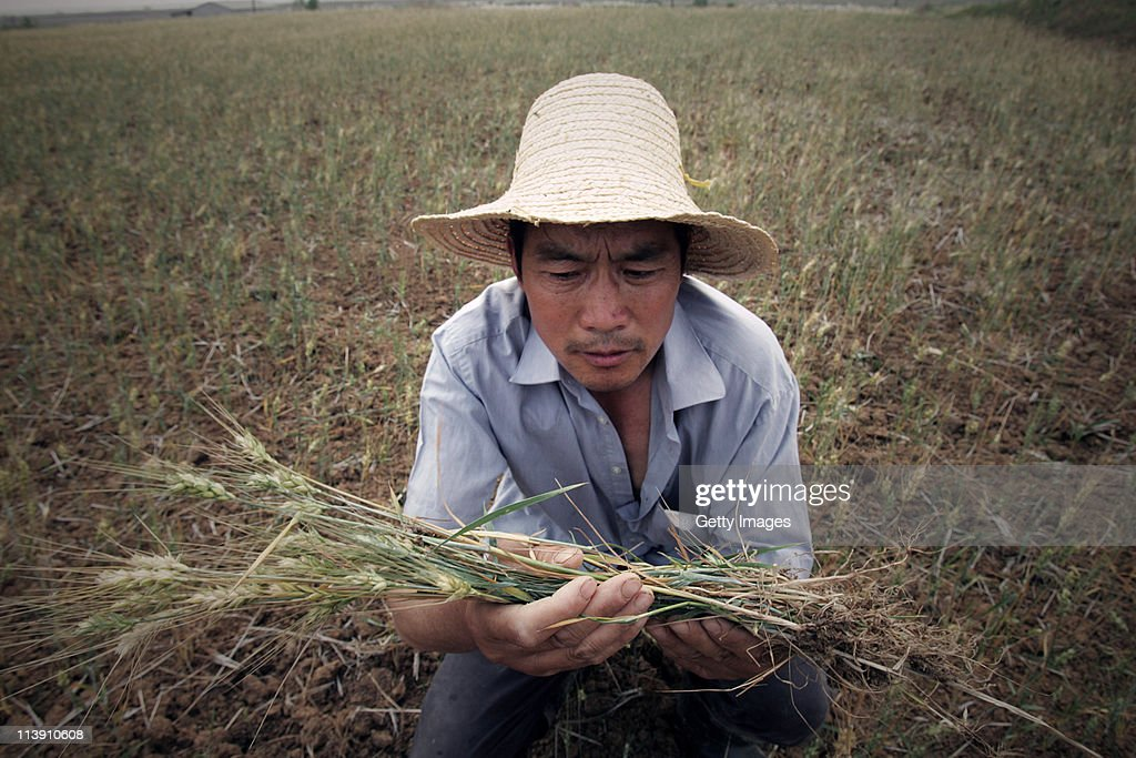 A farmer works on a dried field on May 9, 2011 in Wuhan, Hubei Province of China. Farmers in most parts of central and southern China are worried about the harvest after seeing one of the driest springs on previous records.