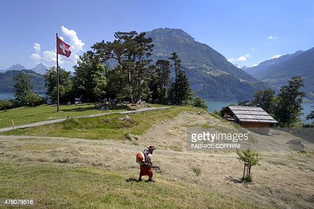 A farmer works on June 5 2015 at the Rutli meadow considered as the birthplace of Switzerland According to the legend it was in the Rutli Meadow in...