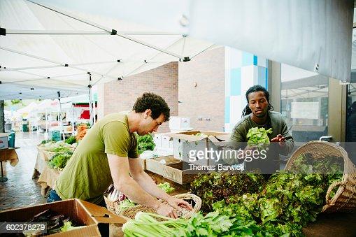 Farmers arranging vegetables at farmers market