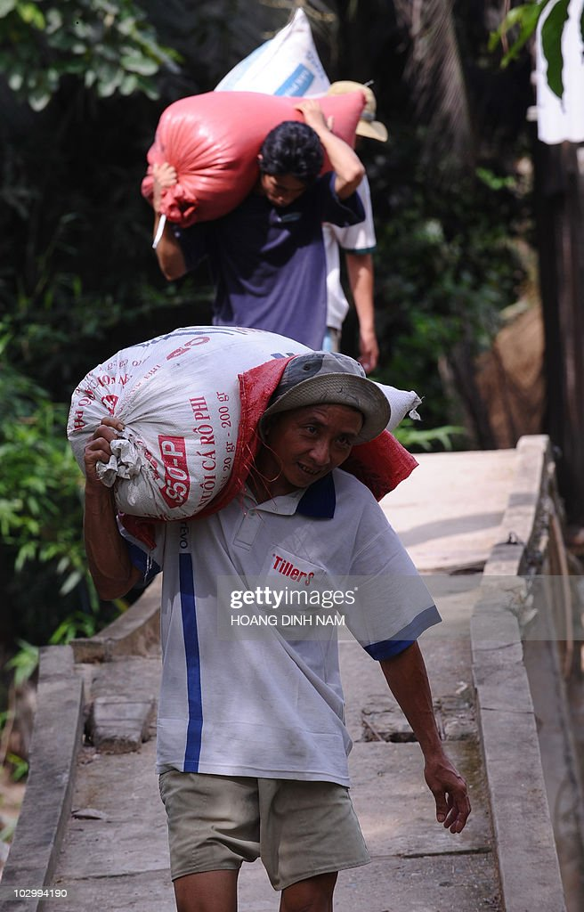 Farmers carry bags of paddy toward a truck in Phu Nhuan district southern province of Tien Giang on July 6 2010 While drought and salt water...