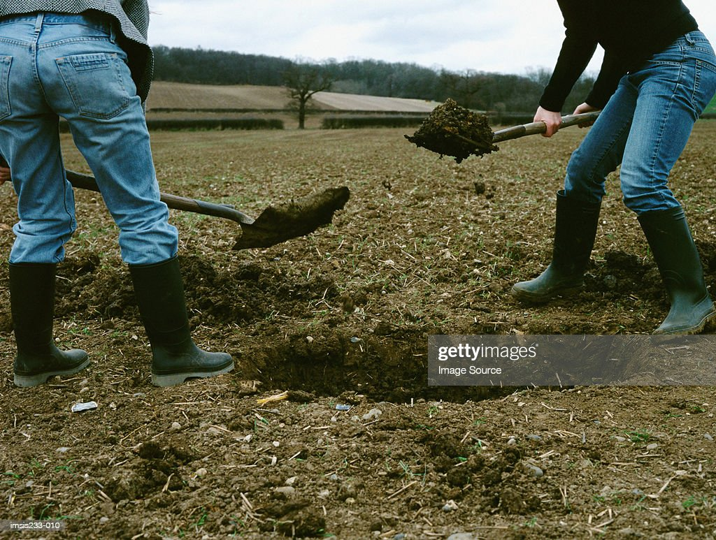 Farmers digging a hole