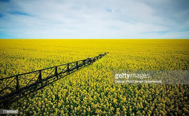 A farmers field