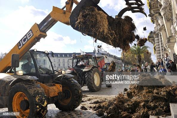 Farmers from the French farmers unions FNSEA and the JA dump manure outside the City Hall during a protest in Tours central France on November 5 2014...