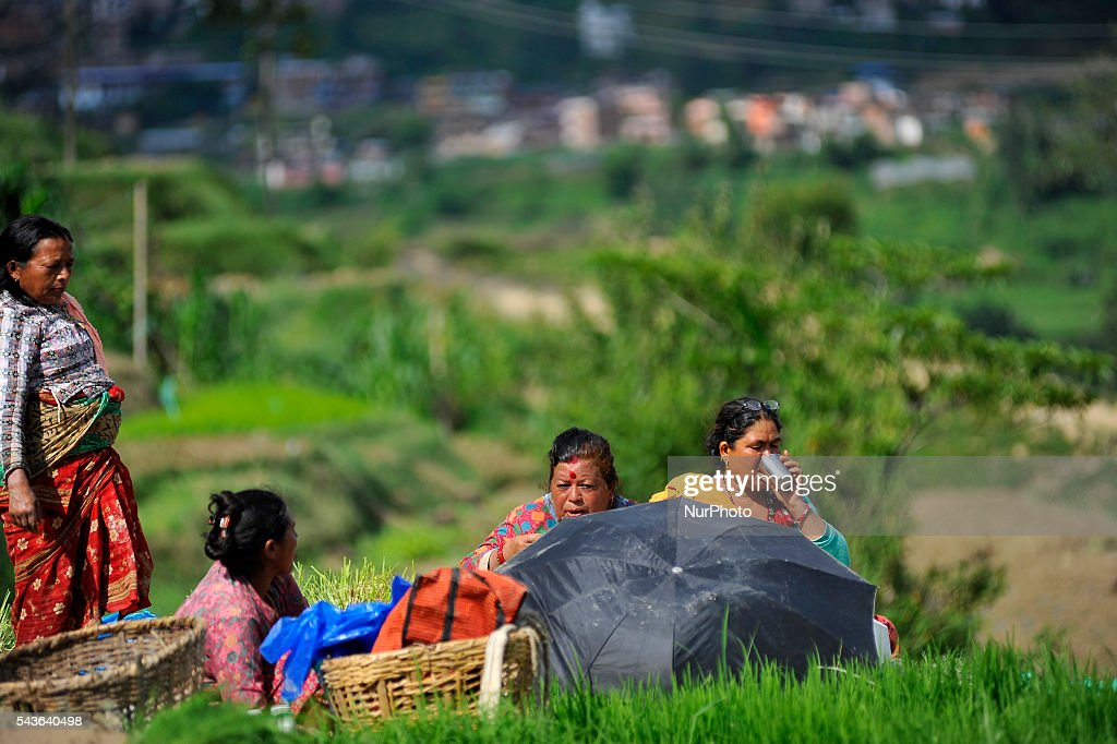 "Farmer's having lunch break after Rice Plantation during the celebration of National Paddy Day ""ASHAD 15"" Rice Plantation at Chapagaun, Patan, Nepal on June 29, 2016. Nepalese people celebrates Rice Plantation (National Paddy Day) Celebration on ""ASHAD 15"" (Nepali Calendar Date). Nationwide by planting rice, playing on mud and eating curd and beaten rice in the rice field. Due to the less rainfall on monsoon season, Most of the people Plants Rice by pumping water from nearer water source."