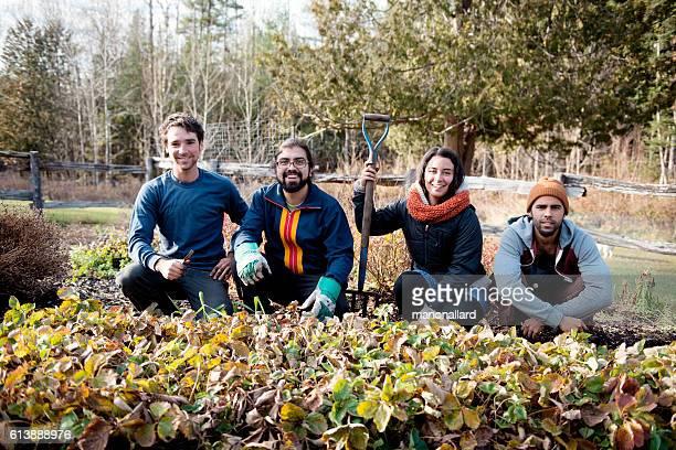Farmers in an organic garden on fall morning