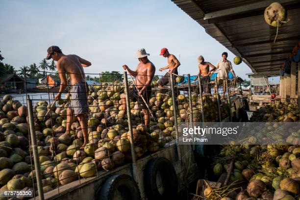 Farmers load up coconuts to a boat on the side of a floating market on May 2 2017 in An Thanh Village Mo Cay Nam District Ben Tre Province Vietnam...