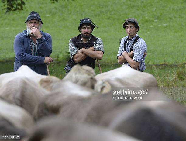 Farmer's make a break during the socalled Viehscheid drive on September 11 2015 near the village of Bad Hindelang southern Germany During the...