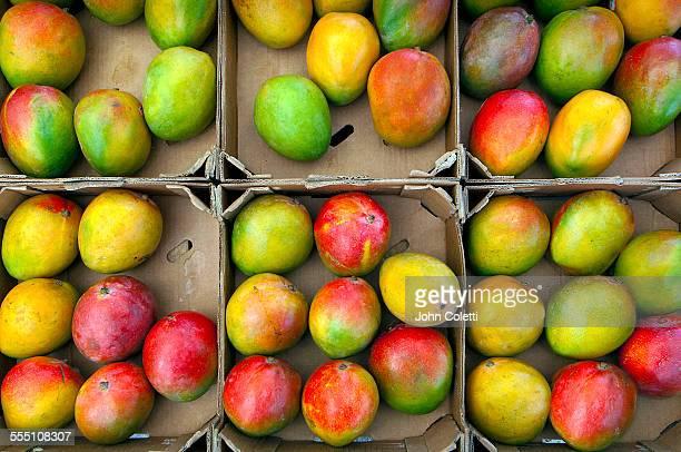 Farmers' Market, Mangos