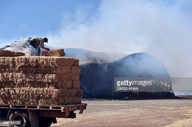 Farmers move fodder away from a burning godown following bushfires in Freeling north of Adelaide on November 26 2015 Hundreds of firefighters battled...