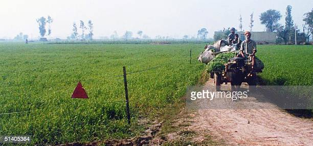 Farmers on a cart pass a field mined by the Indian army denoted by the red triangle at left in Mahuwa village 07 January 2002 close to the...
