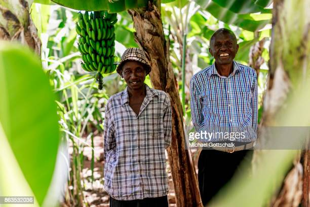 Farmers on a field of a farm on which plants grow with the support of the irrigation system of local farming cooperative Mitooini The field of a farm...