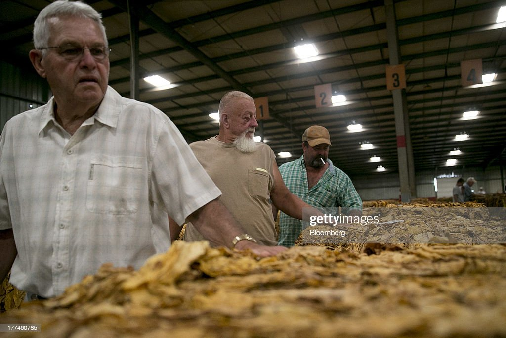 Farmers review bales of tobacco after being bid on during an auction at the Old Belt Tobacco Sales warehouse in Rural Hall, North Carolina, U.S., on Tuesday, Aug. 20, 2013. President Barack Obama's proposal in April to raise federal excise taxes on cigarettes by about 93%, to $1.95 a pack, is not likely to gain political support, due in part to weak consumer spending amid sluggish wage growth in recent years. Photographer: Andrew Harrer/Bloomberg via Getty Images