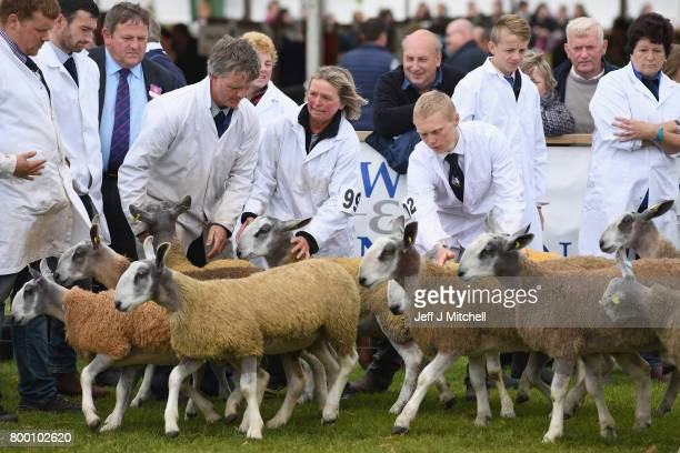 Farmers show their cattle at the Royal Highland show on June 23 2017 in Edinburgh ScotlandThe Royal Highland Show is Scotland's annual farming and...