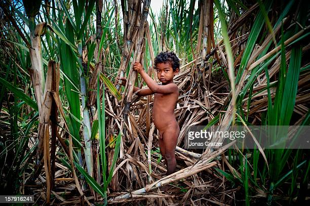A farmer's son in an area that is being exploited by land grabbers who snap up valuable land knowing the impoverished inhabitants can't afford to...