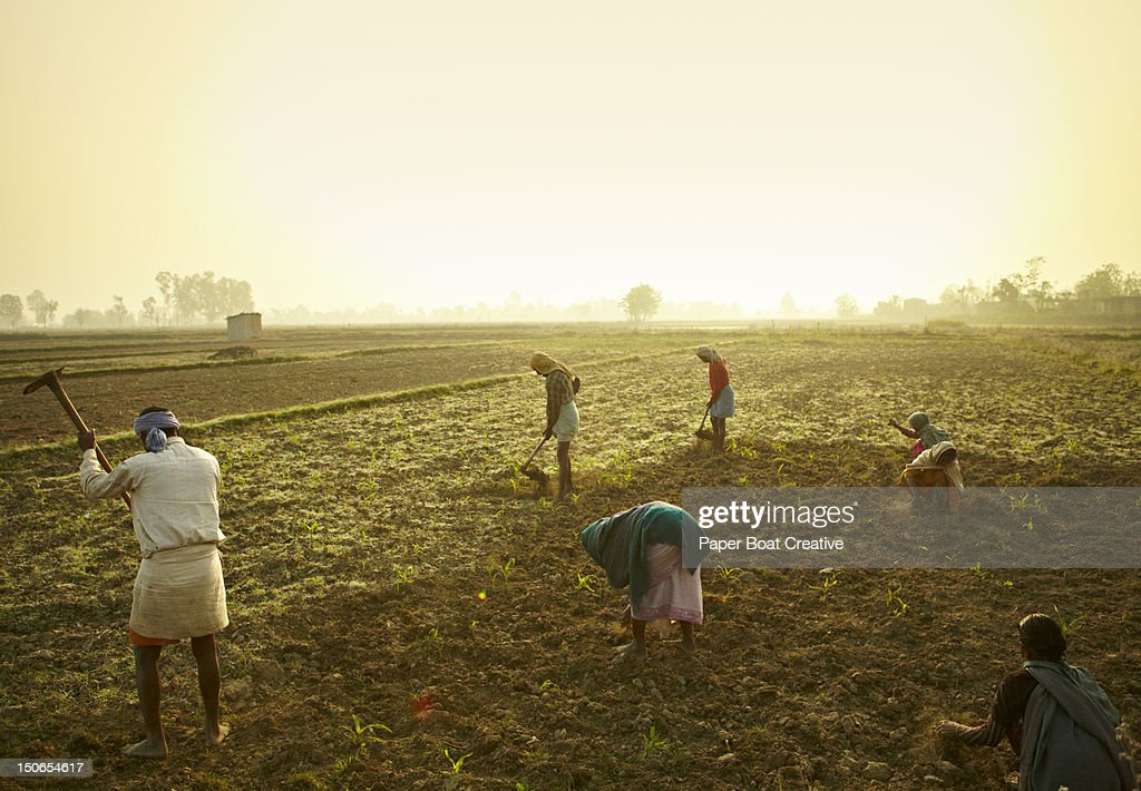 Farmers tilling the land in Chitwan Nepal