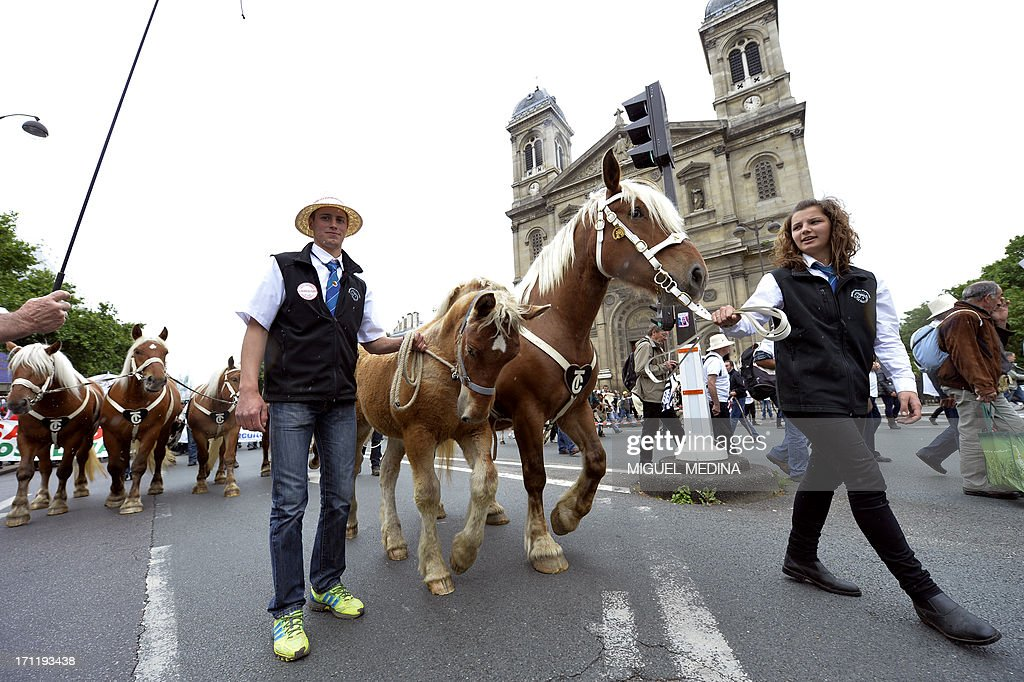 Farmers walk past Francois Xavier church during a rally with their Comtois plow horses in Paris on June 23, 2013. The French agricultural trade union, FNSEA, organized a rally with farmers from all over France and their cattle, to talk about the reality of their work and the difficulties encountered by farmers.