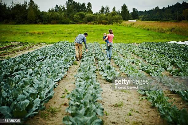 Farmers walking holding baby walking in field