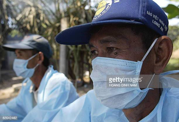Farmers wearing mask and protection suit sit looking at a culling pit where thounsands of sick chickens of their family's are burned out in a village...