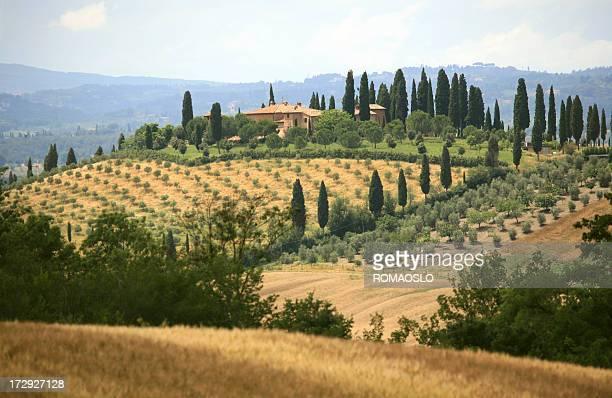 Bauernhaus und cypress gesäumten Straße in der Toskana, Italien