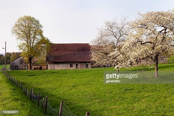 Bauernhaus, späten Nachmittag im Frühling, Waadt, Schweiz