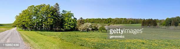 農家、カエデの木々やアップルオーチャード春のパノラマ